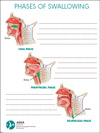 ASHA Swallowing Illustrations Pad