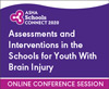 Assessments and Interventions in the Schools for Youth With Brain Injury